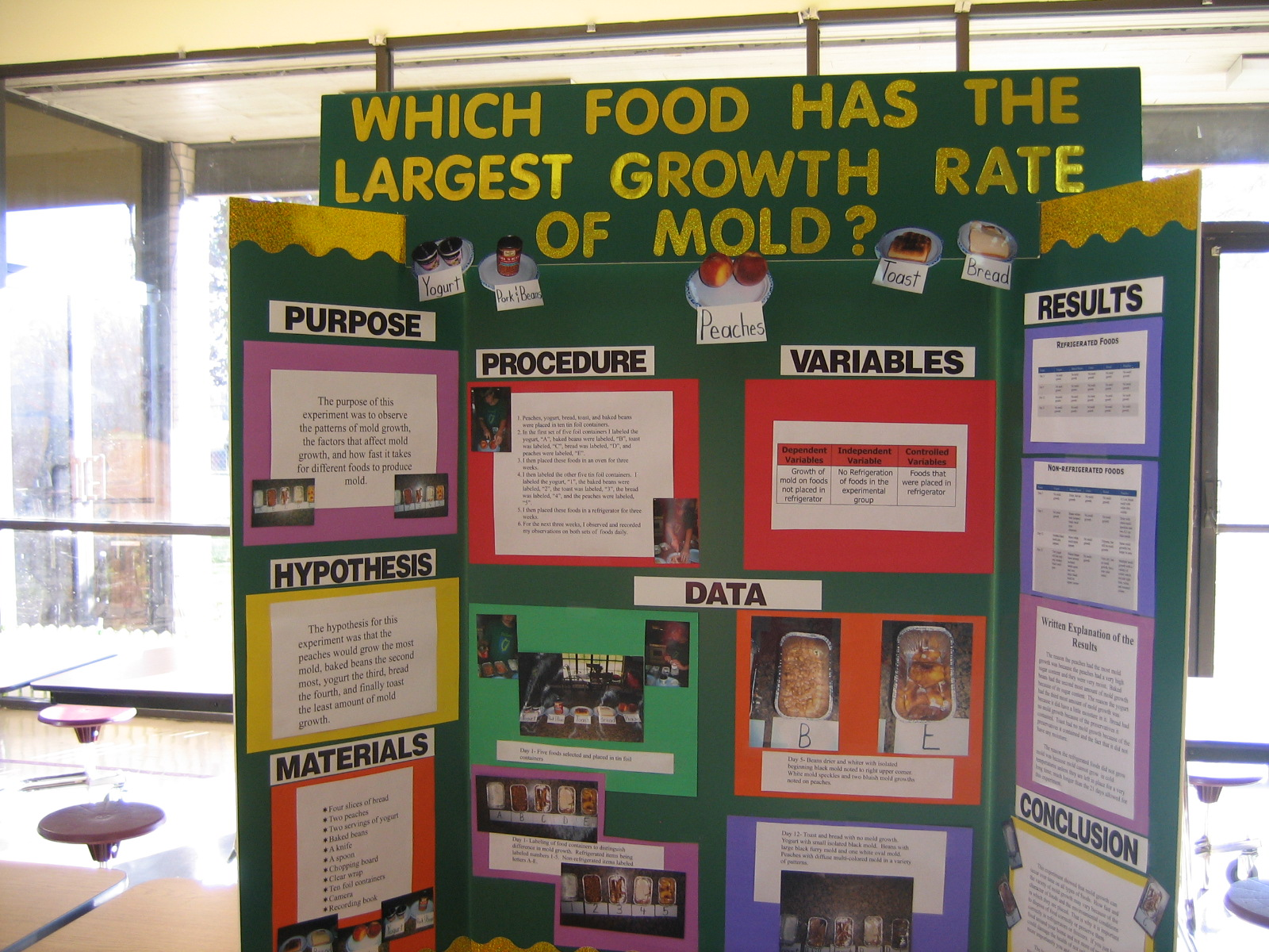 Which Food Has The Largest Growth Rate Of Mold?