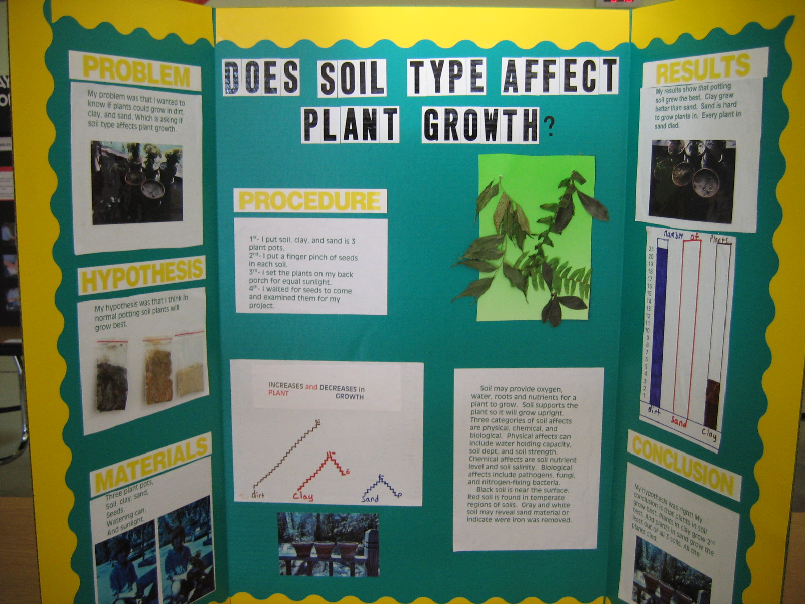 science fair projects pictures Explore the huge range of fun science pictures, images, photos, sketches and diagrams available for free use here at science kids there are hundreds of quality.