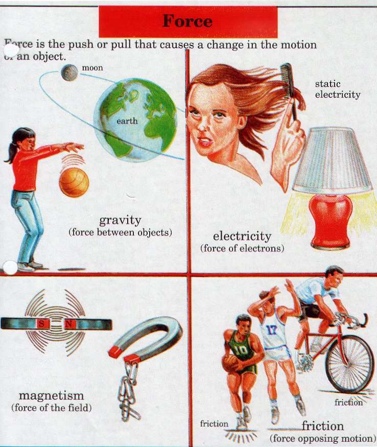 Grade 2 - Force and Motion (Physical Science)
